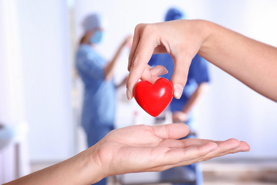 Poziom witaminy D? Badanie ogólne krwi? W ECM Lifeclinica wszystkie badania wykonasz od ręki!